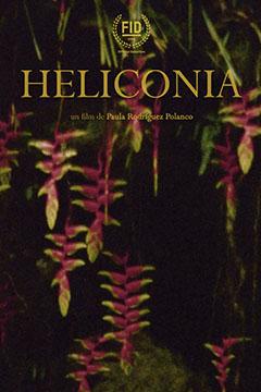 HELICONIA.jpg